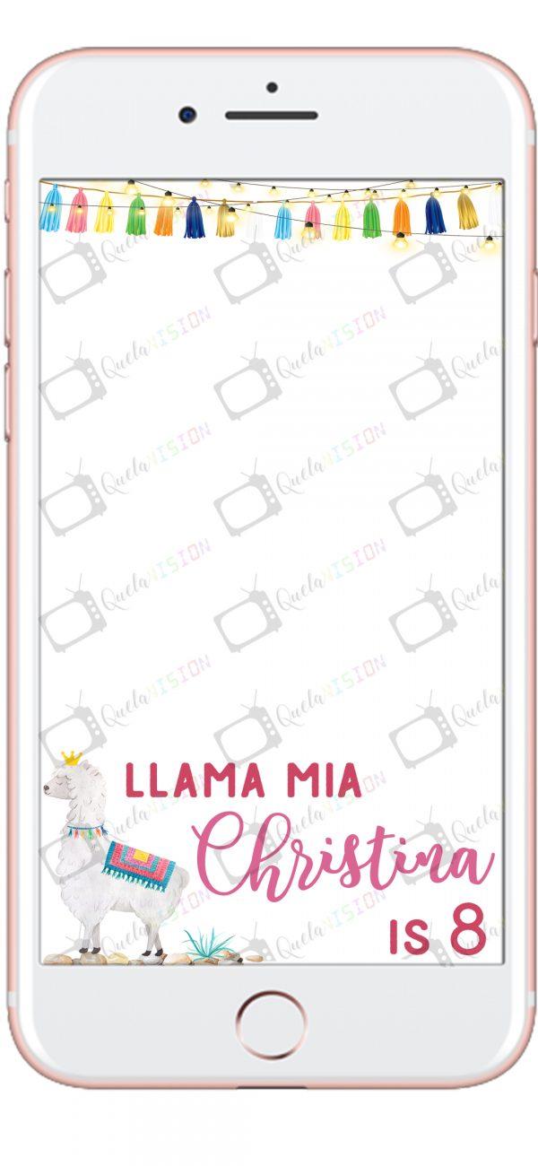 Llama Mia 7